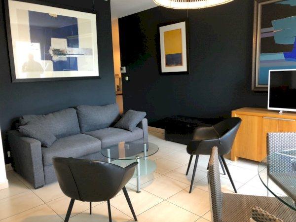 appartement meubl t2 50 m avec balcon et parking en sous. Black Bedroom Furniture Sets. Home Design Ideas